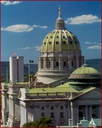 MPS set the quality standard for the peristyle deck preservation at the Pennsylvania State Capitol.